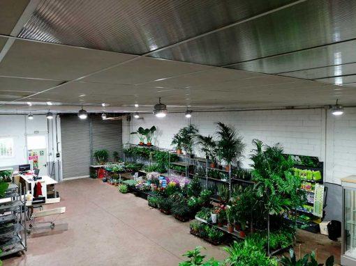 Renovación luminaria Seleflor, Vic